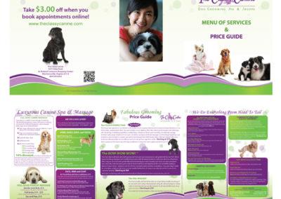 classy-canine-brochure