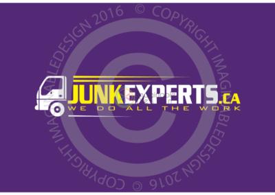 junk-experts